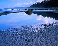 Low tide mud patterns on Ruby Beach; Olympic National Park, WA