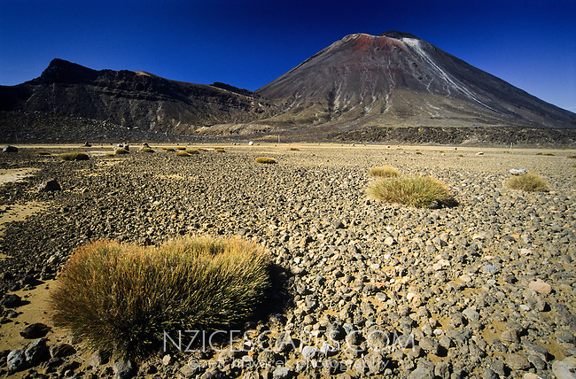 The North Crater with pumice and struggling vegetation on the Tongariro Crossing Track. Mt. Ngauruhoe 2291m in a top right corner - Tongariro National Park, New Zealand