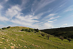 Tel Yodfat in the Lower Galilee