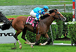 29 August 2009: Get Stormy and jockey JJ Castellano win the Lure Stakesat Saratoga Race Track in Saratoga Springs, New York