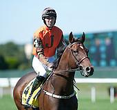 William Entenmann Stakes - Hardrock Eleven