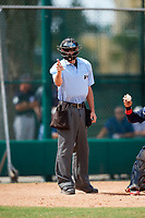 Umpire Tyler Johnson strike call during an Instructional League game between the Detroit Tigers and Atlanta Braves on October 10, 2017 at the ESPN Wide World of Sports Complex in Orlando, Florida.  (Mike Janes/Four Seam Images)