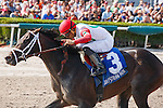 Hallandale Beach, FL- February 06: Tommy Macho #3 with  jockey Luis Saez up wins the Fred W Hooper Stakes at Gulfstream Park. (Photo by Arron Haggart)
