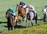 April 11, 2015: Ball Dancing and Javier Castellano win the 27th running of the Jenny Wiley Grade 1 $300,000 at Keeneland race course for owner W. Farish and Steve Mooney and trainer Chad Brown.   Candice Chavez/ESW/CSM