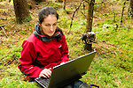 Scottish Wildcat (Felis silvestris grampia) biologist, Kerry Kilshaw, looking at camera trap images, Scotland, United Kingdom