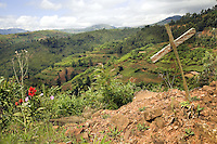 Rwanda. Western province. Nyange. Genocide Memorial.  All that remains of the Nyange church which are piles of weed-strewn rubble, with a wood cross marking mass graves. In 1994, Father Seromba, a hutu extremist, gave the order to bulldoze his own church on top of his own congregation of 3'000 tutsi people. View on the green hills.  © 2007 Didier Ruef