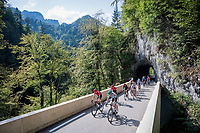 the large breakaway group on their way to the Col de Porte<br /> <br /> Stage 16 from La Tour-du-Pin to Villard-de-Lans (164km)<br /> <br /> 107th Tour de France 2020 (2.UWT)<br /> (the 'postponed edition' held in september)<br /> <br /> ©kramon