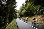 The peloton during Stage 9 of Tour de France 2020, running 153km from Pau to Laruns, France. 6th September 2020. <br /> Picture: ASO/Pauline Ballet   Cyclefile<br /> All photos usage must carry mandatory copyright credit (© Cyclefile   ASO/Pauline Ballet)