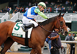 October 09 2015:   Ageless and jockey Julien Leparoux win the 19th running of The Buffalo Trace Franklin County (Listed) $100,000 for trainer Arnaud Delacour and owner Lael Stables, with Lady Shipman and jockey Eduardo Nunez finishing 2nd.  Candice Chavez/ESW/CSM