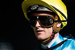 Jockey Zac Purton riding Pick Number One celebrates after winning the 4th race at Sha Tin racecourse on November 1, 2017 in Hong Kong, China. Photo by Marcio Machado / Power Sport Images