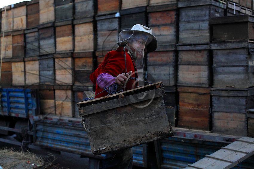 Luoping, Yunnan. Les ruches sont transportées sur les camions à la nuit tombée.///Luoping, Yunnan. The hives are transported on trucks at nightfall.