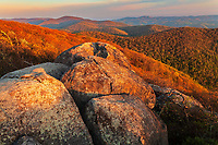 Morning light on the Priest Summit, The Priest Wilderness Area, George Washington National Forest, Virginia