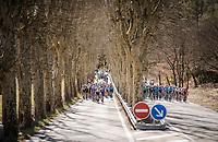 split<br /> <br /> Stage 6: Peynier to Brignoles (176km)<br /> 77th Paris - Nice 2019 (2.UWT)<br /> <br /> ©kramon