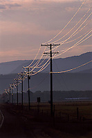 Backlit telephone lines along road