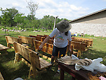 volunteer painting linseed oil onto the benches