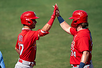 St. Louis Cardinals Scott Hurst (87) high fives John Nogowski (34) after hitting a home run during a Major League Spring Training game against the New York Mets on March 19, 2021 at Clover Park in St. Lucie, Florida.  (Mike Janes/Four Seam Images)