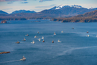 Commercial fishing vessels, Cape purse seiners position themselves in Sitka Sound, on the north side of Middle Island, for the first Herring Sac Roe fishery opener in 2006, southeast, Alaska