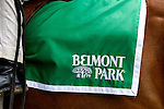 Scenes from Belmont Stakes day, at Belmont Park in Elmont, New York on June 8, 2013.