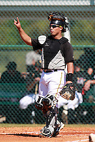 Pittsburgh Pirates minor league catcher Ramon Cabrera (22) vs. the Philadelphia Phillies in an Instructional League game at Pirate City in Bradenton, Florida;  October 5, 2010.  Photo By Mike Janes/Four Seam Images