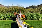 Bride riding horseback to meet groom. Wedding grounds at Avila Valley Barn