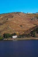 vineyards a train station douro portugal