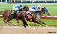 Early Eddie winning at Delaware Park on 7/13/13