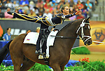 7 October 2010: during Vaulting in the World Equestrian Games in Lexington, Kentucky