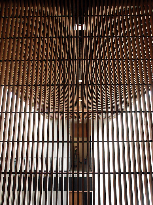 Wood lattices create visual interest in the Lowe Dayton Commons area of the Janet Wallace Fine Arts Center at Macalester College. Photo by Brad Staufferl