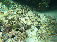 Schnorcheln am Crab Key Beach - 28.01.2020: Schnorcheln in Ocho Rios, Jamaica