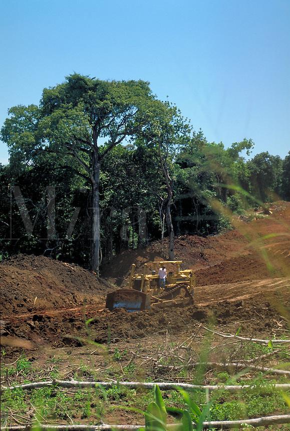 Workers clear rainforest area to build a road near Panama City, Panama. Panama.