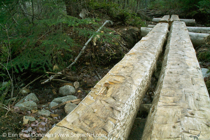 Puncheons (bog bridges) along the Lend A Hand Trail in the White Mountain National Forest, New Hampshire. Puncheons are used in wet areas along trails and act as bridges.