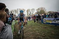 Klaas Vantornout (BEL/Marlux-NapoleonGames)<br /> <br /> 25th Koppenbergcross 2016