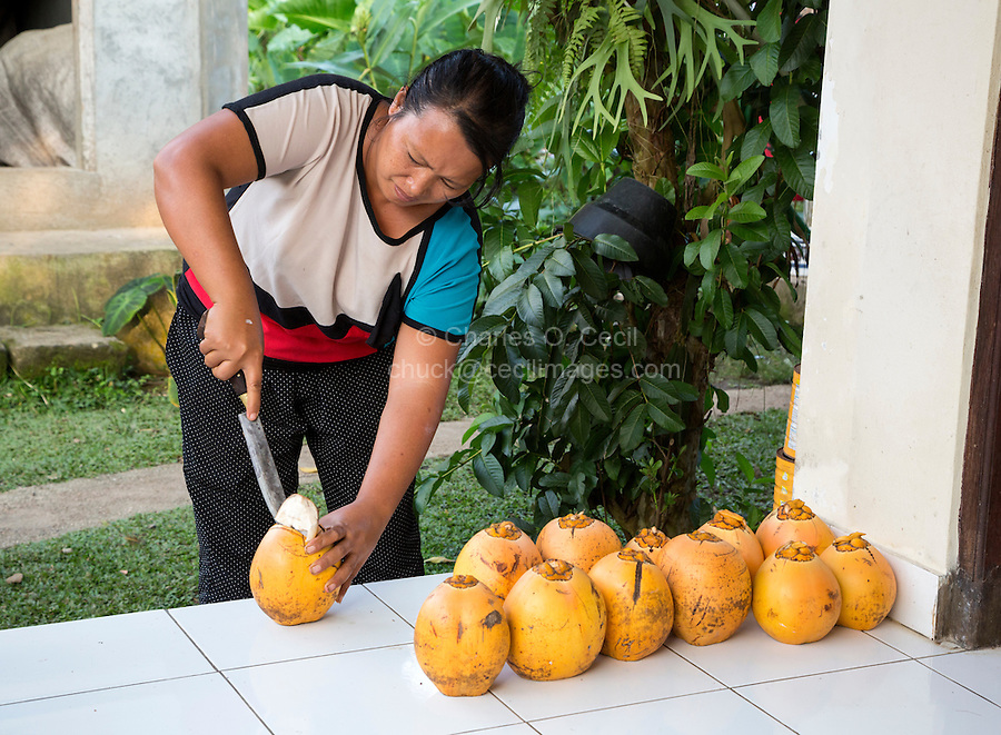 Bali, Indonesia.  Woman Opening a Fresh Coconut for Guests.