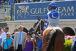 HALLANDALE BEACH, FL - MAR 3:  Maraud #2 with jockey John Velazquez on board, in the winners' circle after winning the Palm Beach G3 Stakes, at Gulfstream Park on March 3, 2018 in Hallandale Beach, Florida. (Photo by Liz Lamont/Eclipse Sportswire/Getty Images)