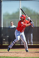 Cincinnati Reds Cristian Olivo (70) during an Instructional League game against the Milwaukee Brewers on October 14, 2016 at the Maryvale Baseball Park Training Complex in Maryvale, Arizona.  (Mike Janes/Four Seam Images)