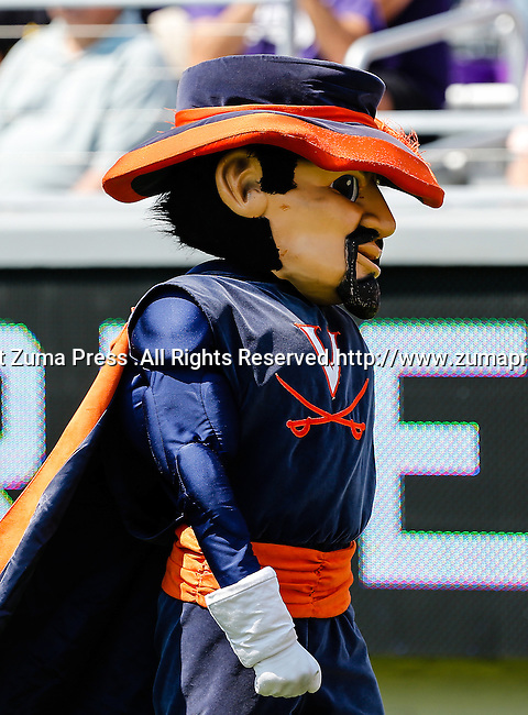 The Virginia Cavaliers mascot, Cavman, in action during the game between the Virginia Cavaliers and the TCU Horned Frogs  at the Amon G. Carter Stadium in Fort Worth, Texas. TCU defeats Virginia 27 to 7...