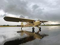 Taylorcraft BC-12D aircraft at the Mineral Wells Airport (MWL) after a rain shower