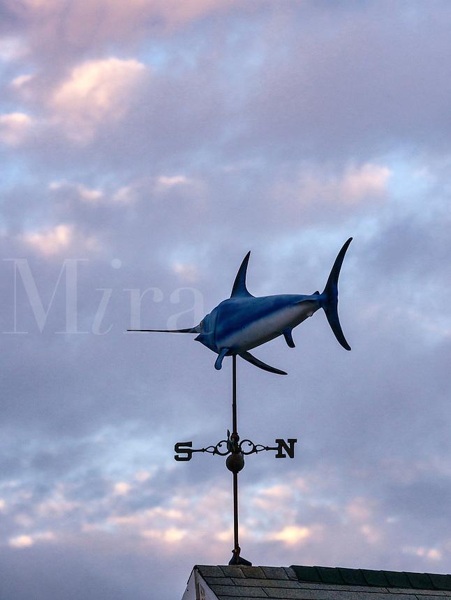 Swordfish weather vane.