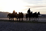 August 15, 2021, Deauville (France) - Horses from the Barrière Deauville Polo Cup training at sunrise at the beach in Deauville. [Copyright (c) Sandra Scherning/Eclipse Sportswire)]
