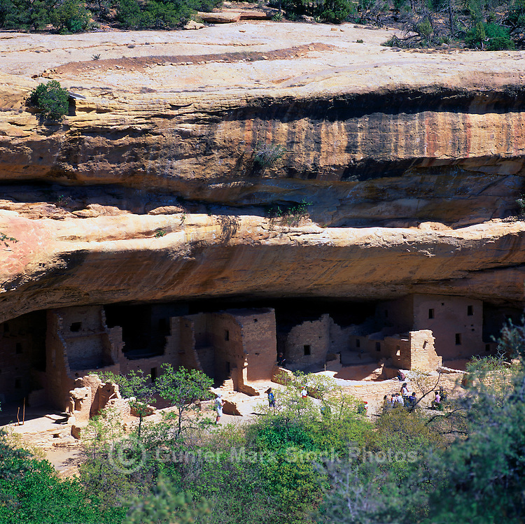 Mesa Verde National Park, Colorado, USA - 'Spruce Tree House', an Ancestral Puebloan aka Anasazi Cliff Dwelling and Ruins