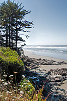 An summer afternoon in Yachats Oregon.