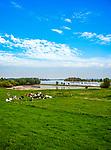 Deutschland, Nordrhein-Westfalen, bei Xanten: Rheinauen, Niederrhein | Germany, Northrhine-Westphalia, near Xanten: river Rhine