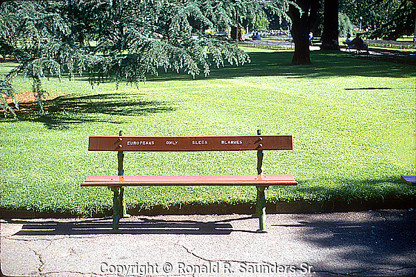 NOTICE on BENCH WARNS WHITES ONLY ARE ALLOWED TO REST THERE