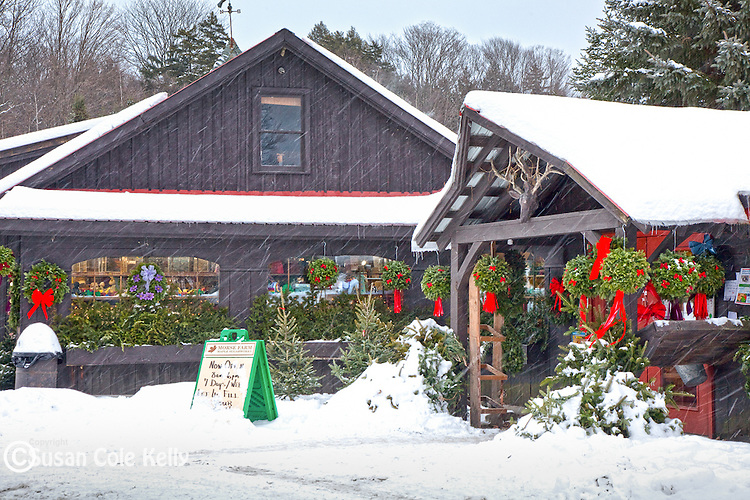 Christmas at the Morse Farm Sugarworks in Montpelier, VT
