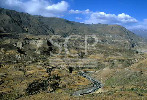 Colca Valley, Peru. Pre-Columbian agricultural terraces still in use with the river.