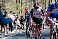 Tadej Pogačar (SVN/UAE-Emirates) up the last climb of the day: the Côte de la Roche-aux-Faucons<br /> <br /> 107th Liège-Bastogne-Liège 2021 (1.UWT)<br /> 1 day race from Liège to Liège (259km)<br /> <br /> ©kramon