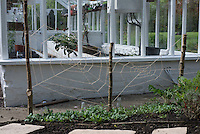 The garden at Kirk House, Chipping, Preston, Lancashire.