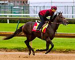 LOUISVILLE,KNY - MAY 04:  McCraken, Morning works  at Churchill Downs, Louisville, Kentucky. (Photo by Sue Kawczynski/Eclipse Sportswire/Getty Images)