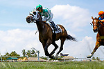 HALLANDALE BEACH, FL - APRIL 01:  #2 Summersault with jockey Paco Lopez up wins the Orchid Stakes (G3T) on Florida Derby Day at Gulfstream Park, Hallandale Beach, FL. (Photo by Arron Haggart/Eclipse Sportswire/Getty Images)