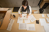 Biology Senior Lindsey Taylor accessions samples of mosses and lichens that were collected during environmental surveys in remote areas of Alaskan in UAA's Herbarium in Beatrice McDonald Hall.